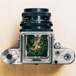 Photography & Digital Art